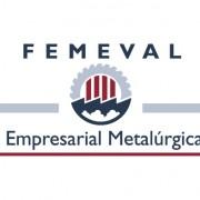 Jornada-Femeval-Biconsulting